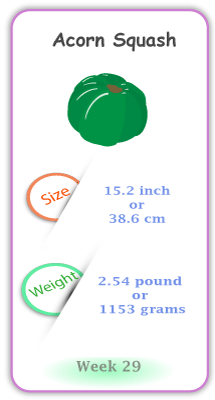 Baby Size and Weight Flashcard week 29