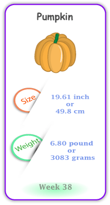 Baby Size and Weight Flashcard week 38