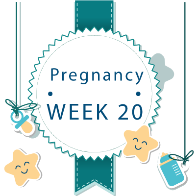 20 week pregnant banner