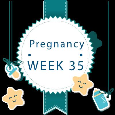 35 week pregnant banner